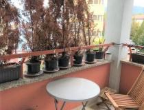 Na prenájom 2 - izbový byt v Banskej Bystrici, časť Belveder – realitná kancelária Xemar