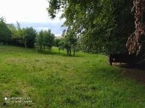 Predaj- stavebný pozemok- 1558 m2 - Detva- Skliarovo – realitná kancelária Xemar